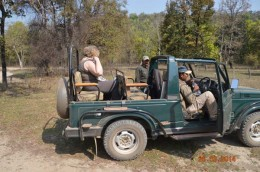 India Wildlife Holidays - 4x4 Jeep Safari