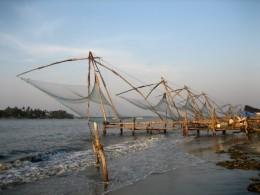 India Wildlife Holidays - Chinese Fishing Nets