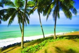 India Wildlife Holidays - Kerala beach