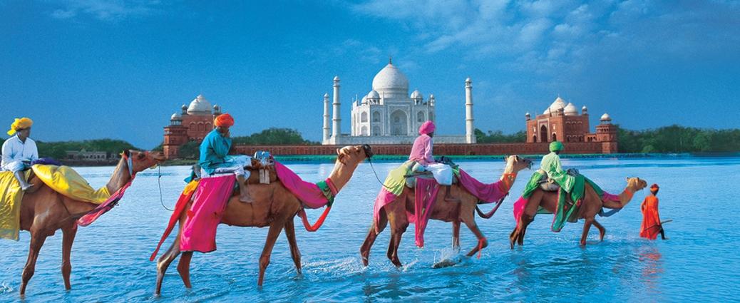 India Wildlife Holidays - Safari Tours